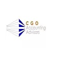 ACCOUNTING ADVISORS CGO S.A. DE C.V.